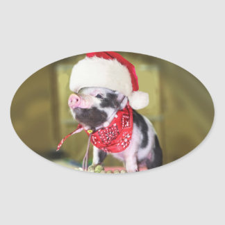 Pig santa claus - christmas pig - piglet oval sticker