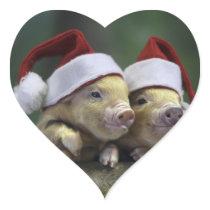 Pig santa claus - christmas pig - three pigs heart sticker