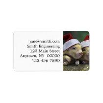 Pig santa claus - christmas pig - three pigs label