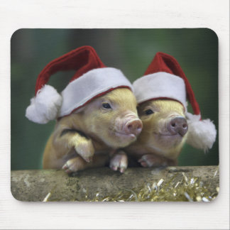 Pig santa claus - christmas pig - three pigs mouse pad