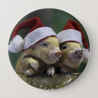 Pig santa claus - christmas pig - three pigs pinback button