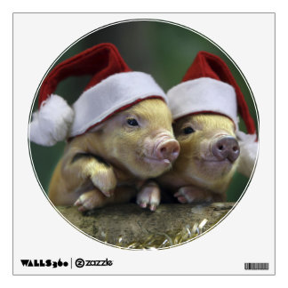 Pig santa claus - christmas pig - three pigs wall decal