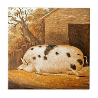 Pig Spotted Hog Vintage Farm Painting Tile