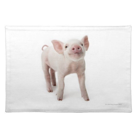 Pig Standing Looking Up Cloth Placemat