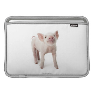 Pig Standing Looking Up Sleeve For MacBook Air