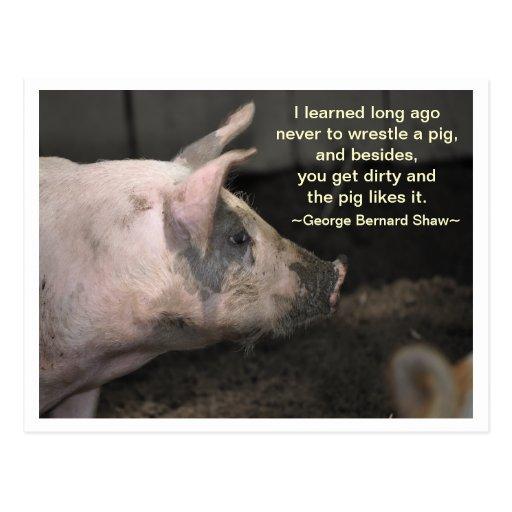 Pig Wisdom - wrestle Post Cards