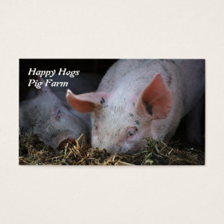Pig with lopsided ears snuffling in straw business card