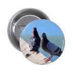 Pigeon 2 Inch Round Button
