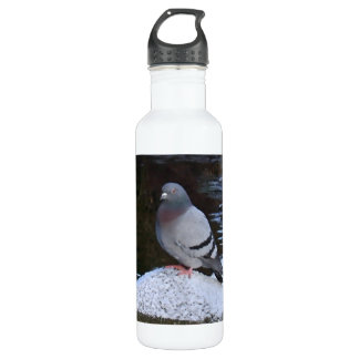 Pigeon Aluminum Water Bottle, BPA Free Water Bottle