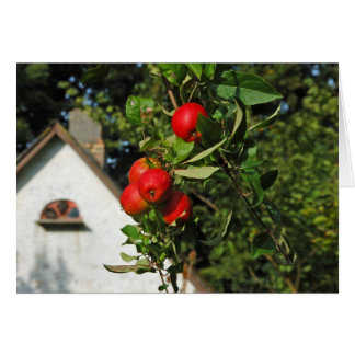 Pigeon Apples Greeting Cards