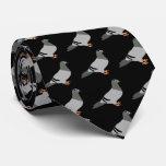 Pigeon Black Tie