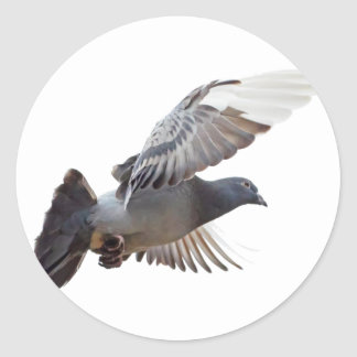 pigeon fly to love joy peace classic round sticker