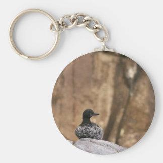 Pigeon Guillemot Keychain
