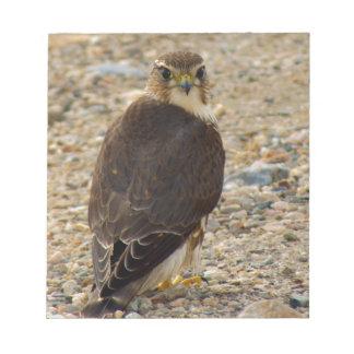 Pigeon Hawk Notepad