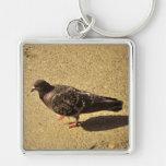 Pigeon Key Chain