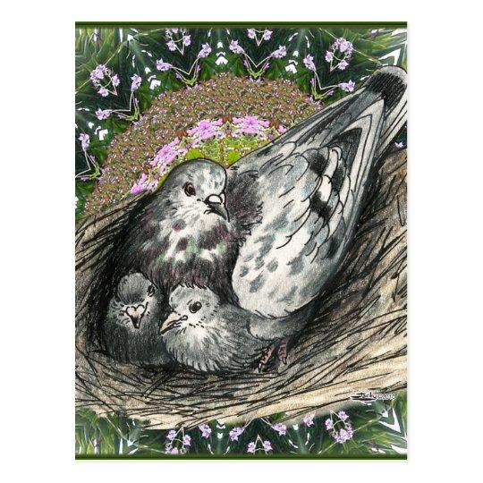 Pigeon Nest Postcard