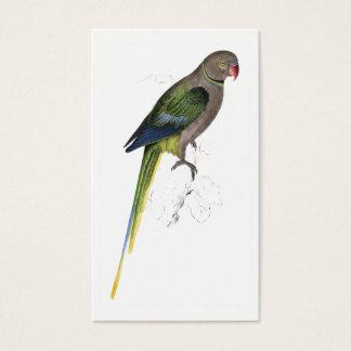 Pigeon Parrakeet by Edward Lear Business Card