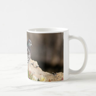 Pigeon perched on a cliff ledge coffee mug