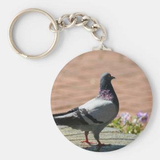 Pigeon Photograph Key Chain