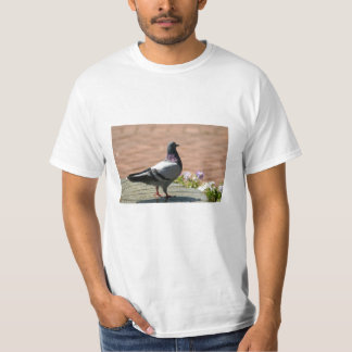 Pigeon Photograph T-Shirt