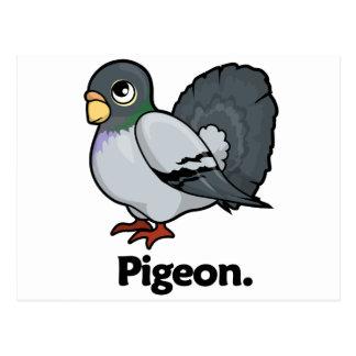 Pigeon Pigeon. Postcard