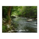 Pigeon River - Gatlinburg, TN Postcard