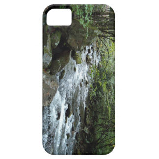 Pigeon River iPhone 5 case