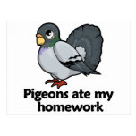 Pigeons ate my homework post cards