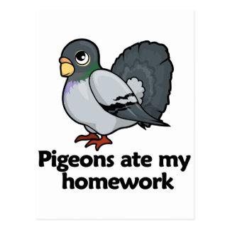 Pigeons ate my homework postcard