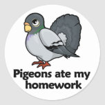 Pigeons ate my homework stickers