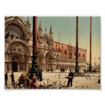 Pigeons in St. Mark's Place, Venice, Italy classic Print