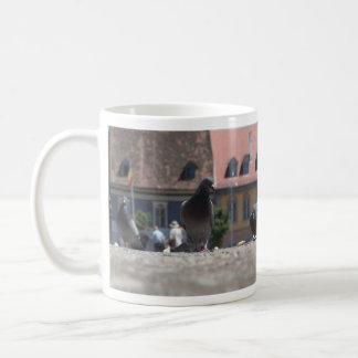 Pigeons in town mugs