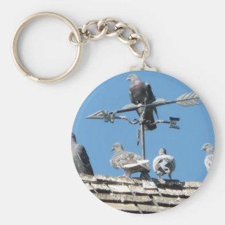 pigeons keychain
