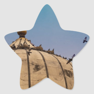 Pigeons on a dome star stickers