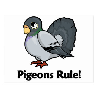 Pigeons Rule! Postcard