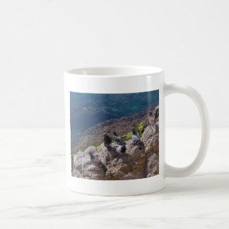 Pigeons sunbathing coffee mug