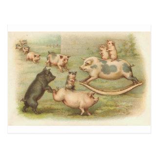 Piggies in play Vintage Postcard