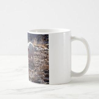 Piggies Mug