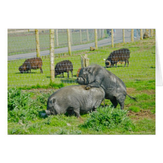 Piggy Back Ride Card