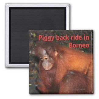 Piggy Back Ride in Borneo Fridge Magnet