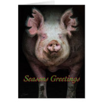 Piggy greetings card