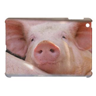 Piggy iPad Mini Case