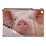Piggy iPad Mini Cases