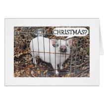 PIGGY=NOT CHRISTMAS TILL UNDER MISTLETOE WITH YOU! CARD