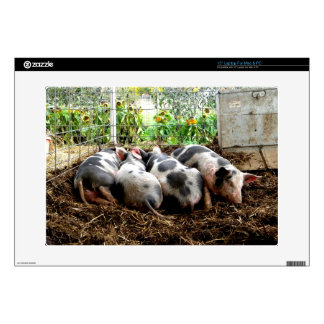 "Piggy Pile 15"" Laptop Skin"