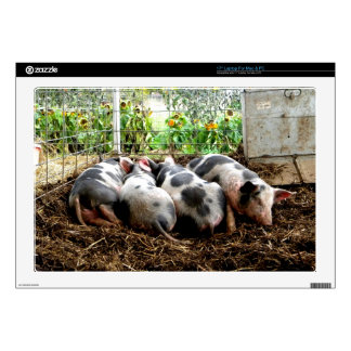 "Piggy Pile 17"" Laptop Decal"
