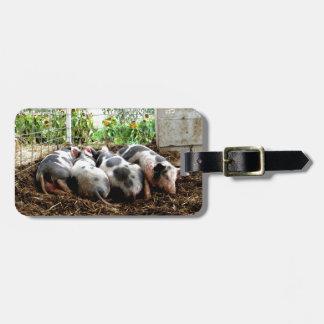 Piggy Pile Bag Tag