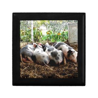 Piggy Pile Jewelry Box