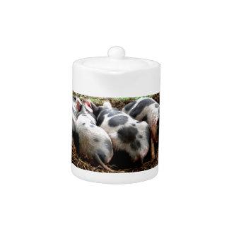 Piggy Pile Teapot