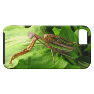 Piggyback Mantis ~ iPhone 5 CaseMate Vibe iPhone 5 Covers